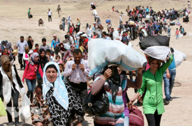 Vad driver människorna på flykt?